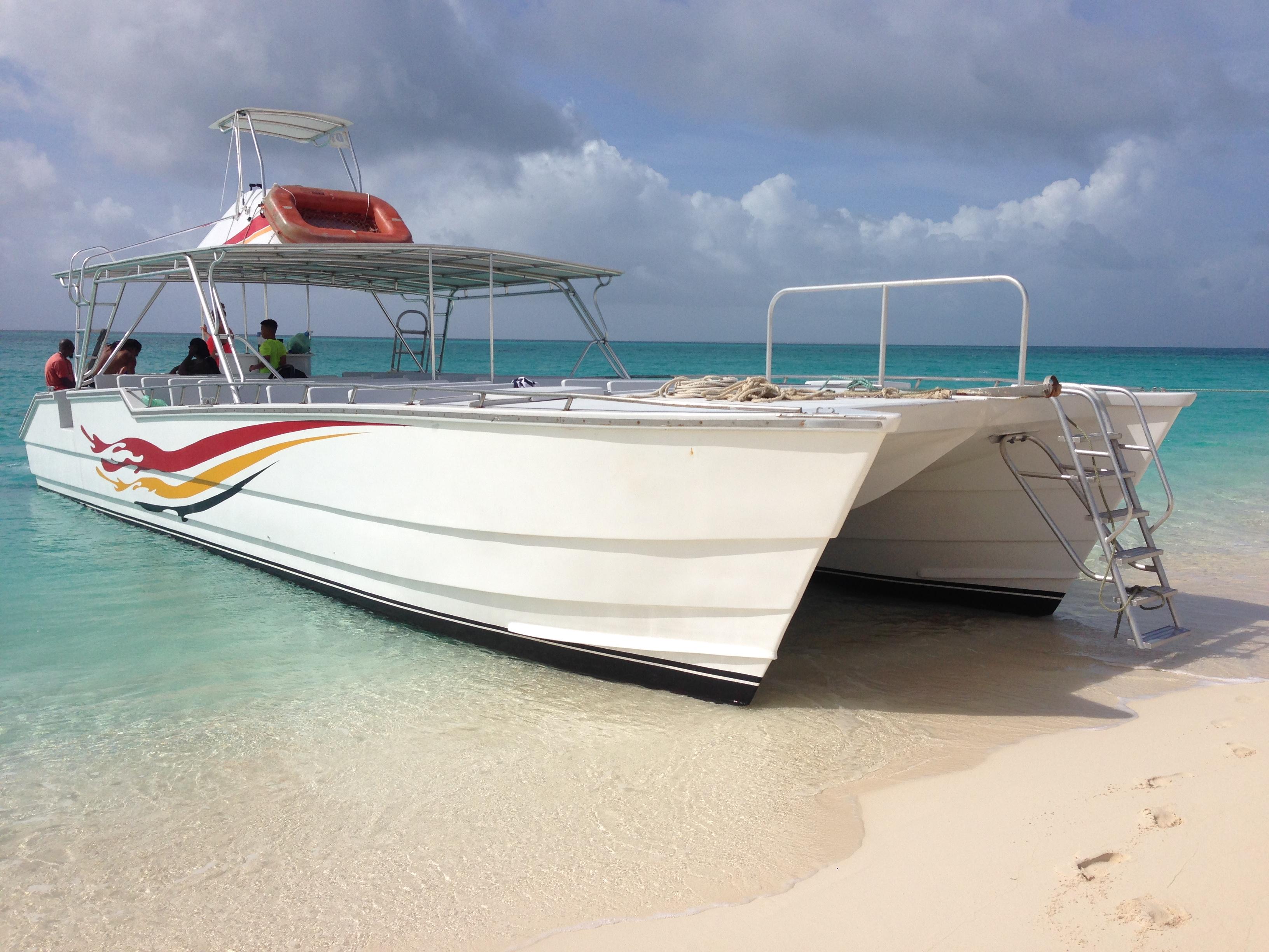 Custom built whale watch boat
