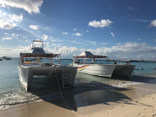 whale watch boat